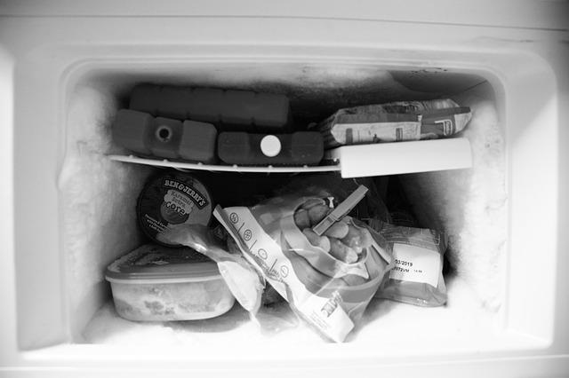 mrazák v lednici